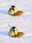funny-photoshop-battle-winners-188-5a63887aeab6d__700.jpg