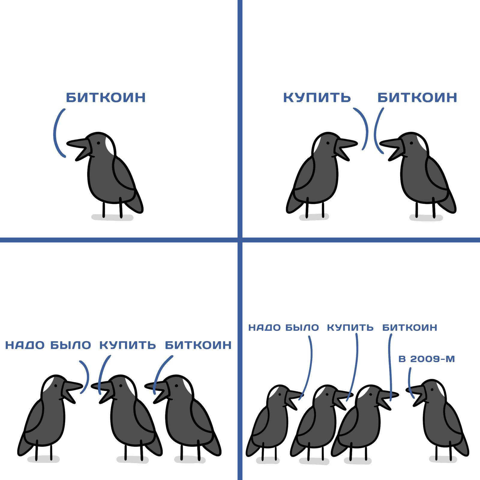 Исследования ворон-свистунов показали, что чем больше коллектив животных, тем в среднем умнее его члены