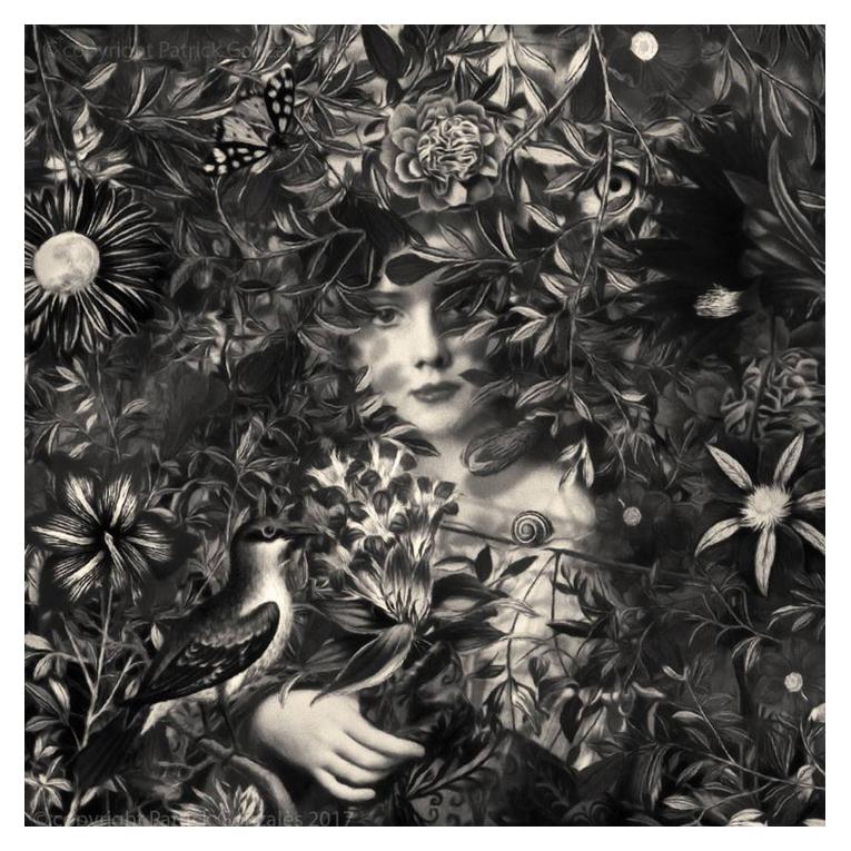 Surrealistic Black & White Digital Paintings