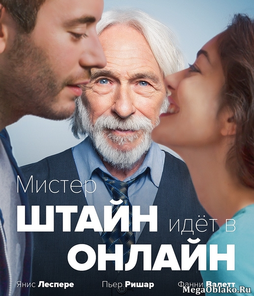 Мистер Штайн идёт в онлайн / Mr. Stein Goes Online / Un profil pour deux (2017/WEB-DL/WEB-DLRip)
