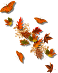 Autumn Gold #10 (134).png