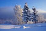 День морозный, зимний.jpg
