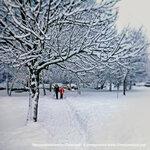 Красоты зимнего Солнцево, Авиаторов 16