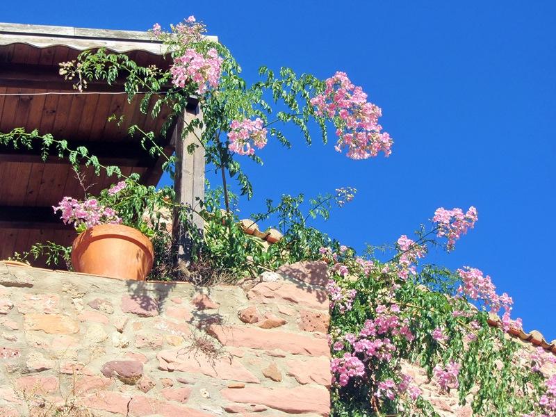 На Побережье апельсиновых цветов (Пеньискола и окрестности)
