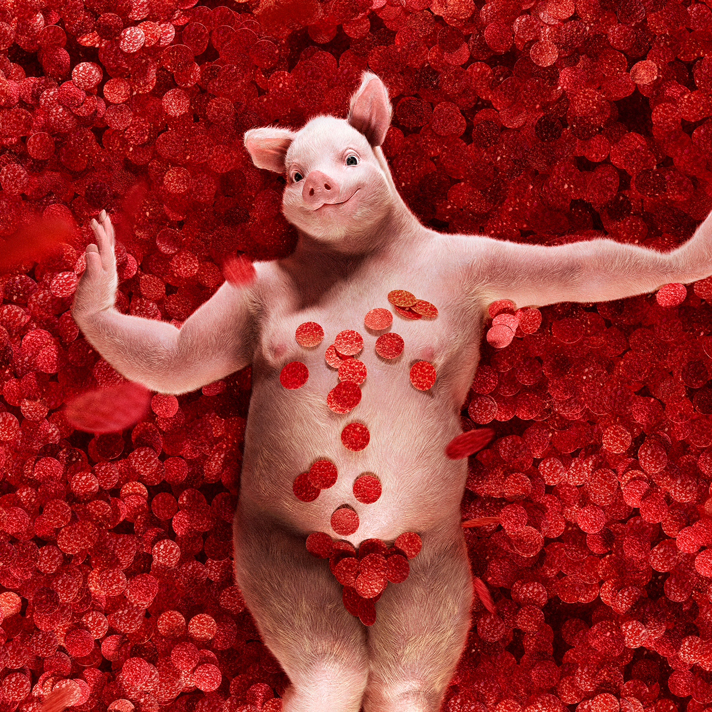 Swine Dreams / работа Cristian Girotto