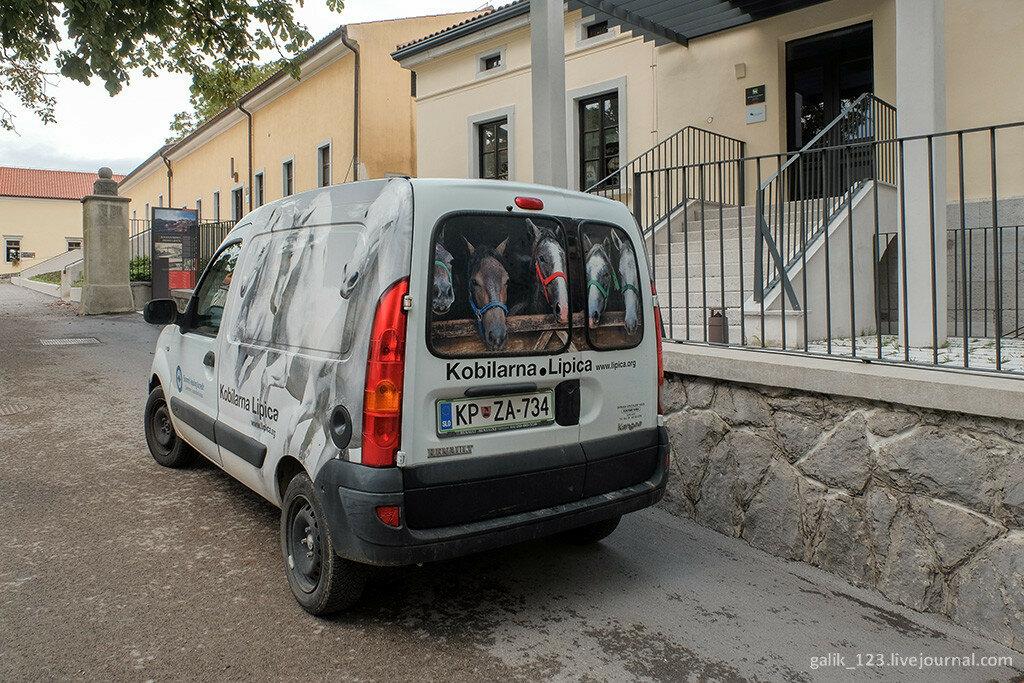 Конезавод в Липице -