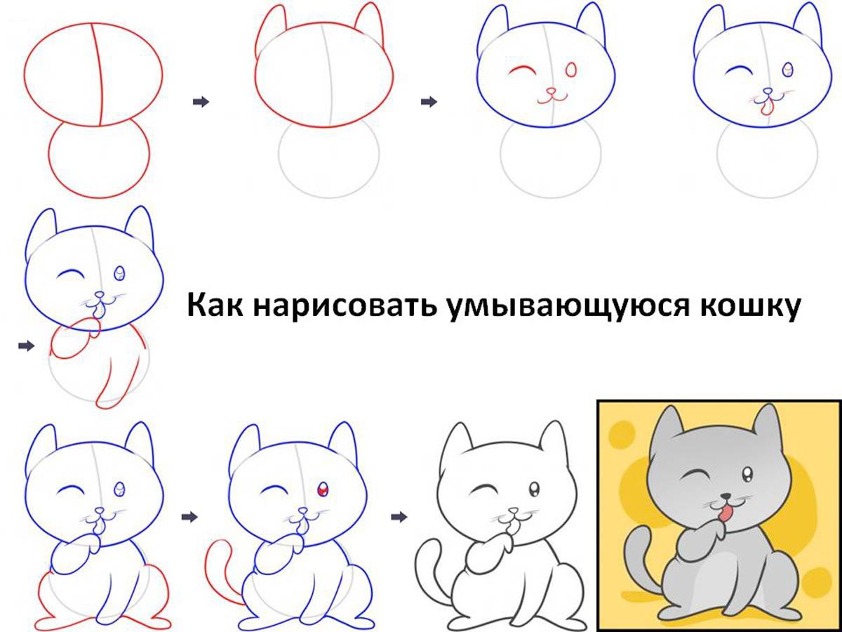 фото Рисуем поэтапно умывающегося кота