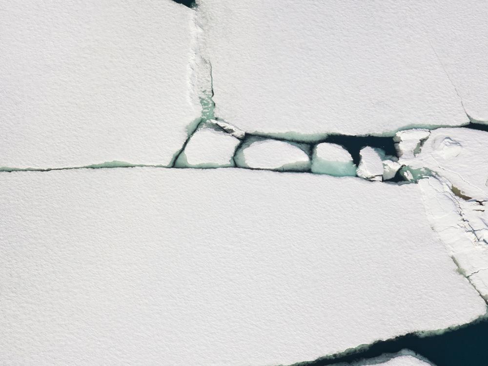 Мы её теряем. Арктика в фотографиях Дайан Тафт