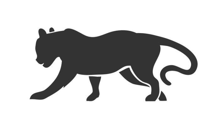 Тигр — эмоциональность и глубокий ум. Люди этого года вступают в конфликт со старшими по возра