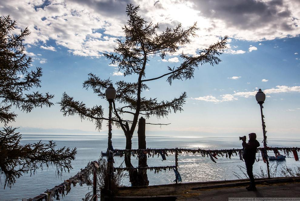 23. У буддистов и шаманистов существует обычай повязывать цветные ленты на деревья. Считается, что п