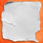 chouk77_paper12.jpg