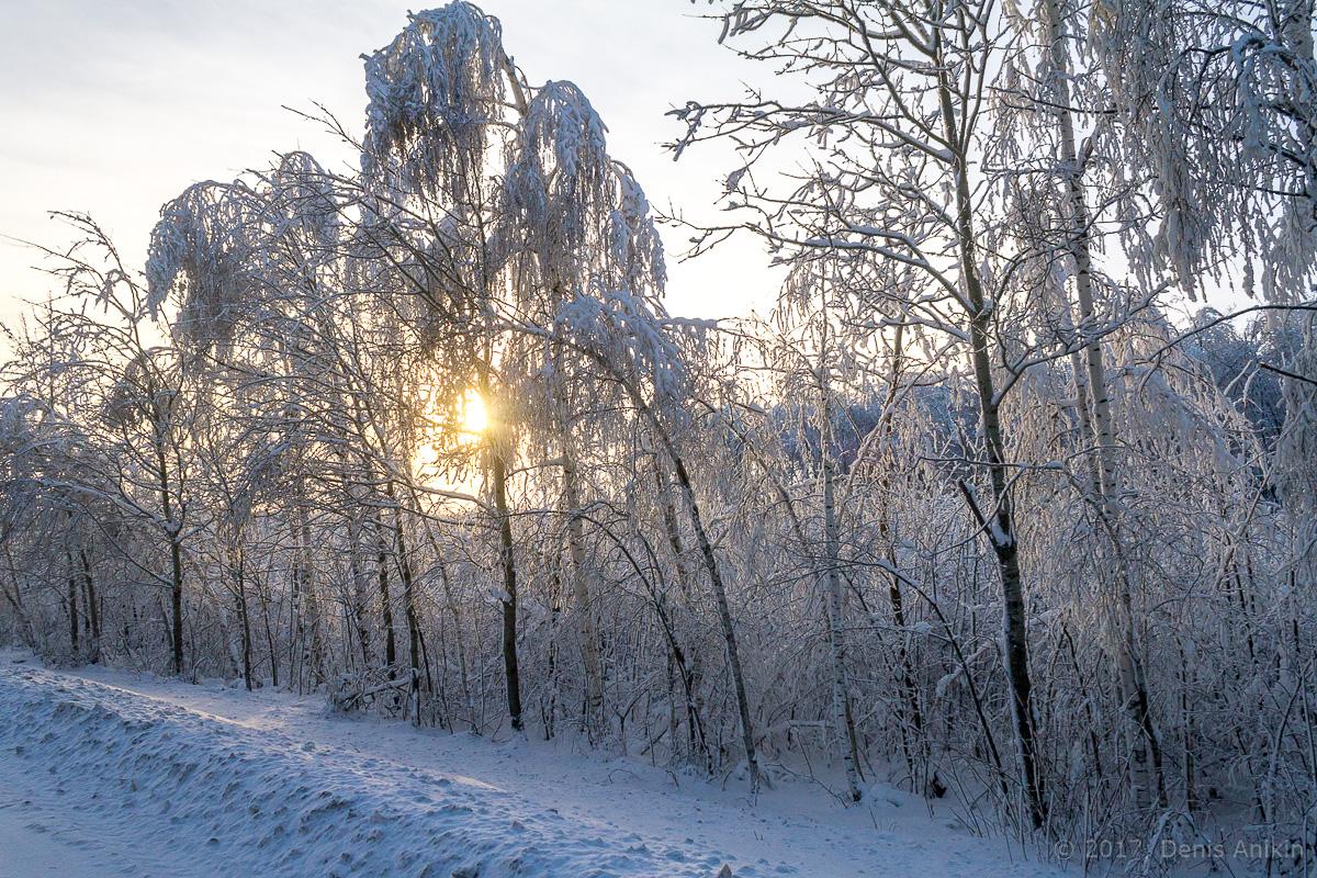 дорога зима хвалынск фото 4
