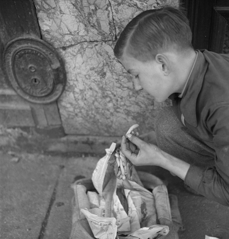 44. Торговцам жареным картофелем и бульоном безработица не грозит