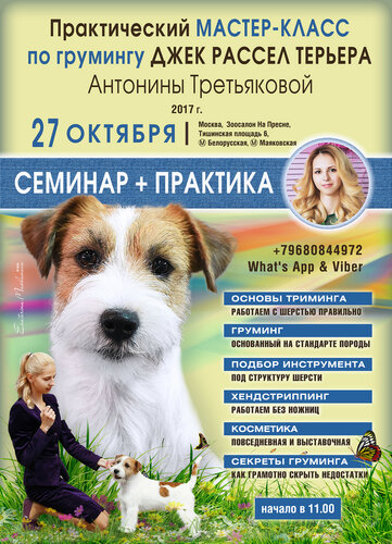 https://img-fotki.yandex.ru/get/373511/114660.3/0_9fad3_660bcddb_L.jpg