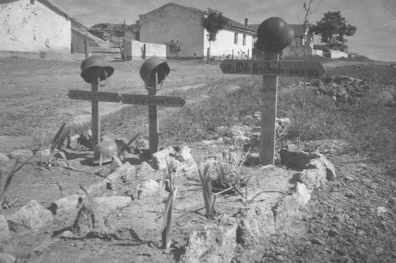 graves_ukraine.emditd65u6o84c8wo8cokscgw.ejcuplo1l0oo0sk8c40s8osc4.th.jpeg