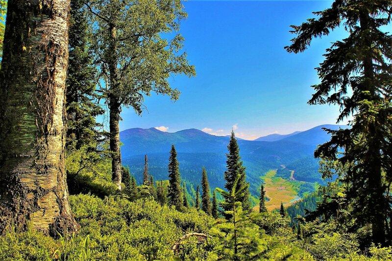 IMG_6204.JPG Взгляд в долину