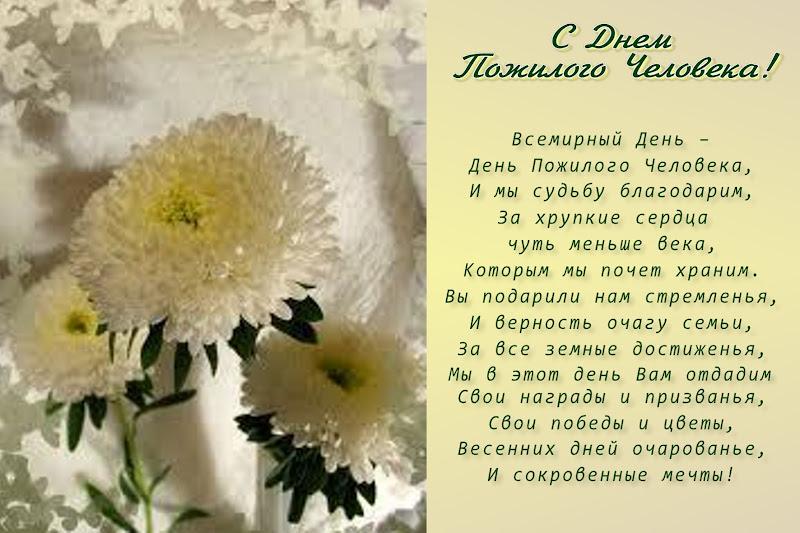 Открытка. С Днем пожилого человека! Белые астры, стихи!