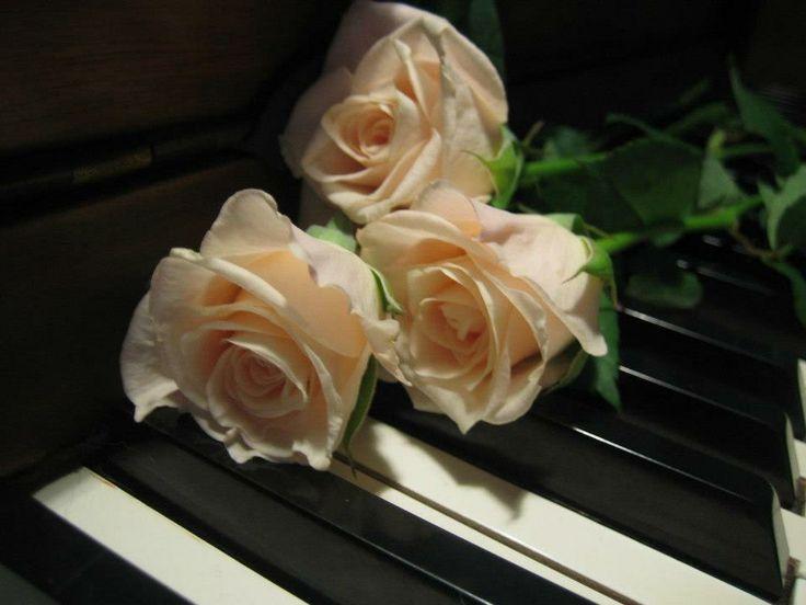 Картинка. Всемирный день музыки! Поздравляем!