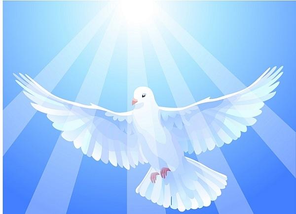 21 сентября — Международный день мира. Голубь в солнечных лучах