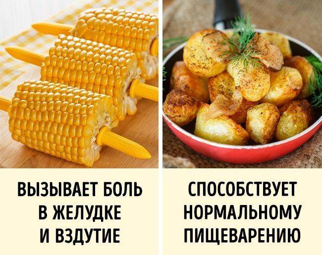 © depositphotos.com  © depositphotos.com     В картофеле содержатся кальций инатр