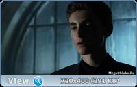 Готэм / Gotham - Сезон 4, Серии 1-11 (22) [2017, WEB-DLRip | WEB-DL 1080p] (LostFilm | NewStudio)
