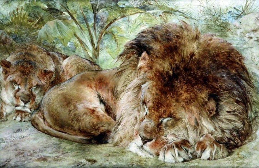 Siesta, Sleeping Lions