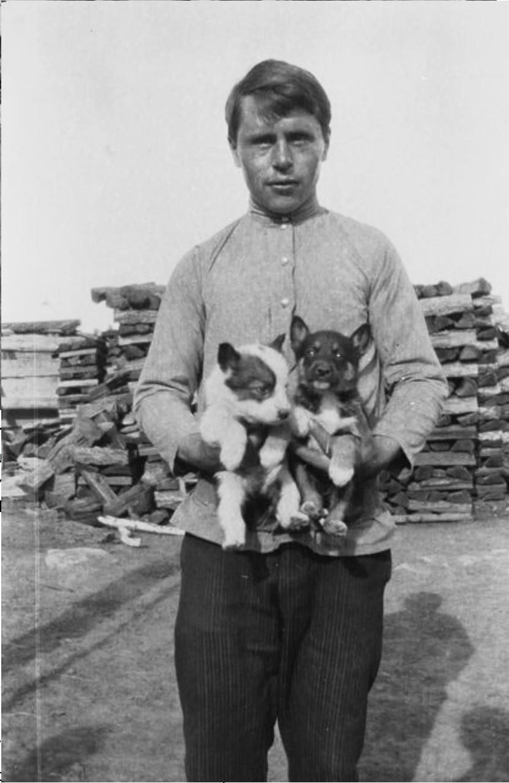 Племянник И. И. Бердникова с двумя щенками