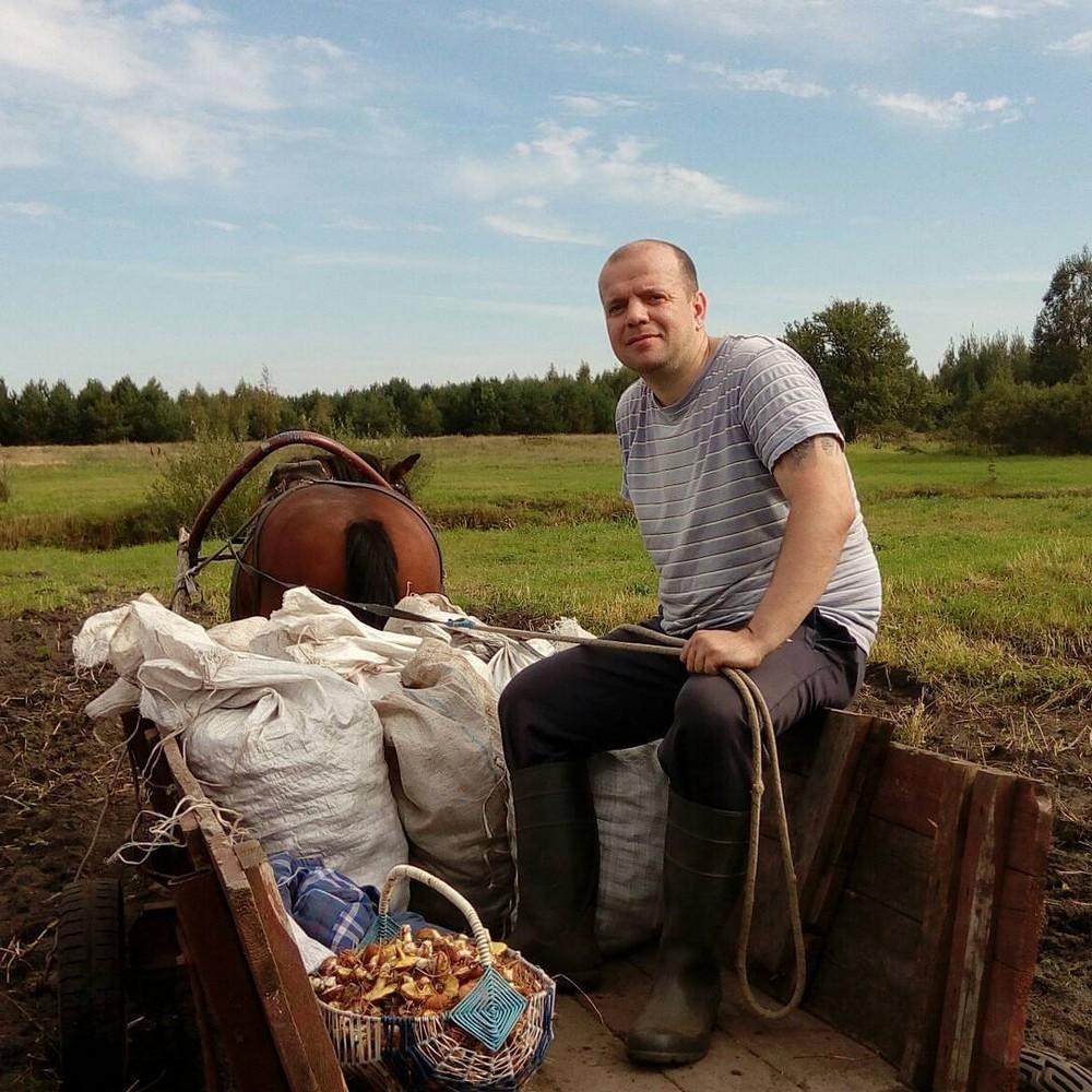 Беларусы капаюць бульбу