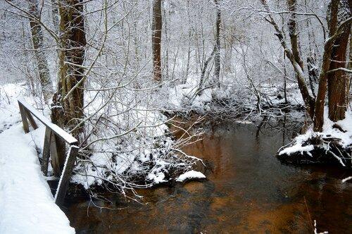 Зимние воды...
