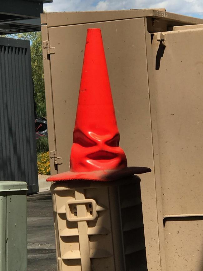 © reddit.com      Паровой котел или гусеница вочках, которая пытается накрасить г