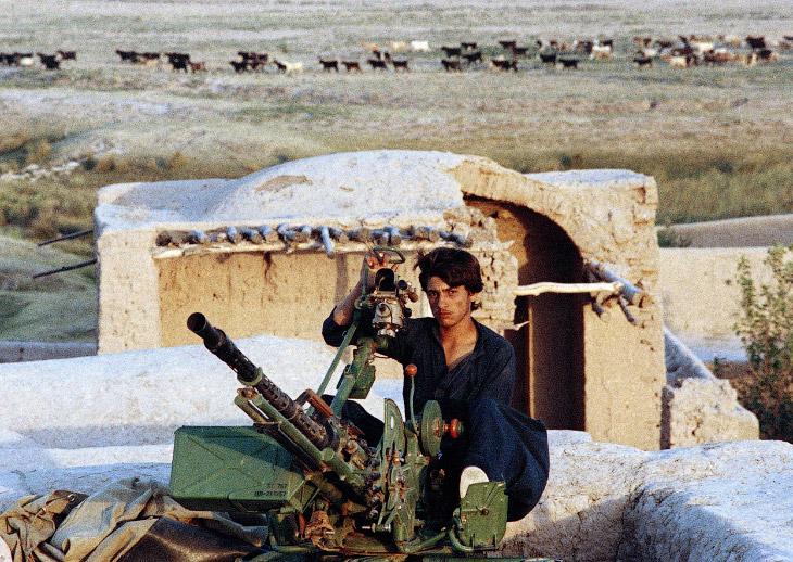 Цель ввода советских войск в конце 1979 года — обезопасить свои южные границы и стремление СССР подд