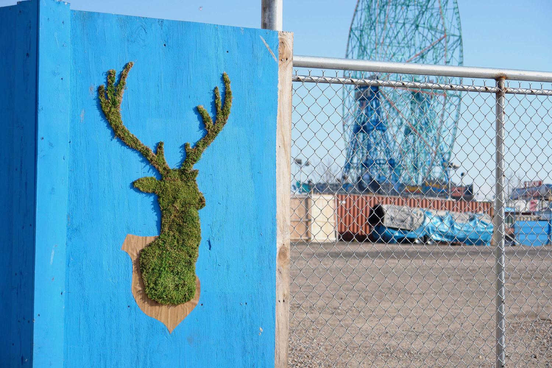 Green Street Art – Edina Tokodi aka Mosstika (11 pics)