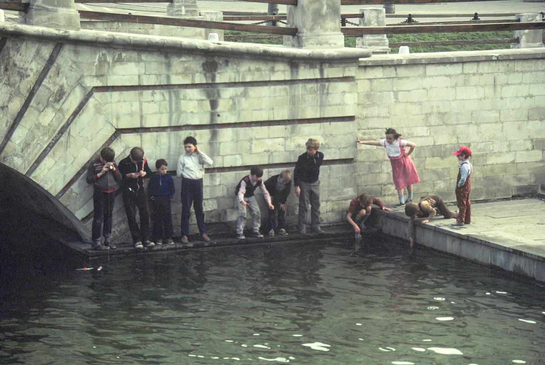 Дети на берегу Москвы-реки