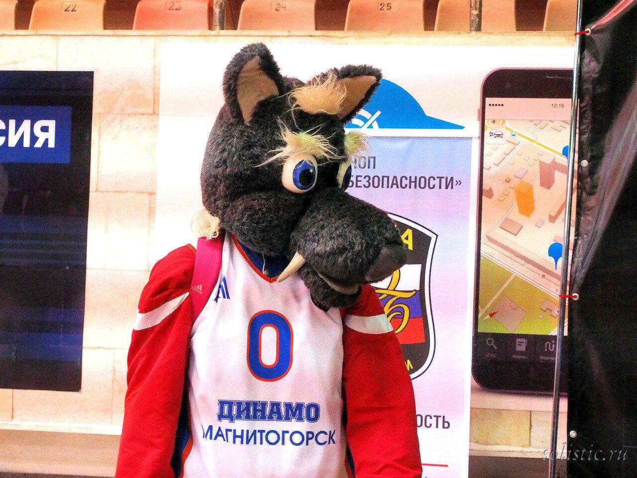 4 Динамо Магнитогорск - Нефтехимик 25.01.2018