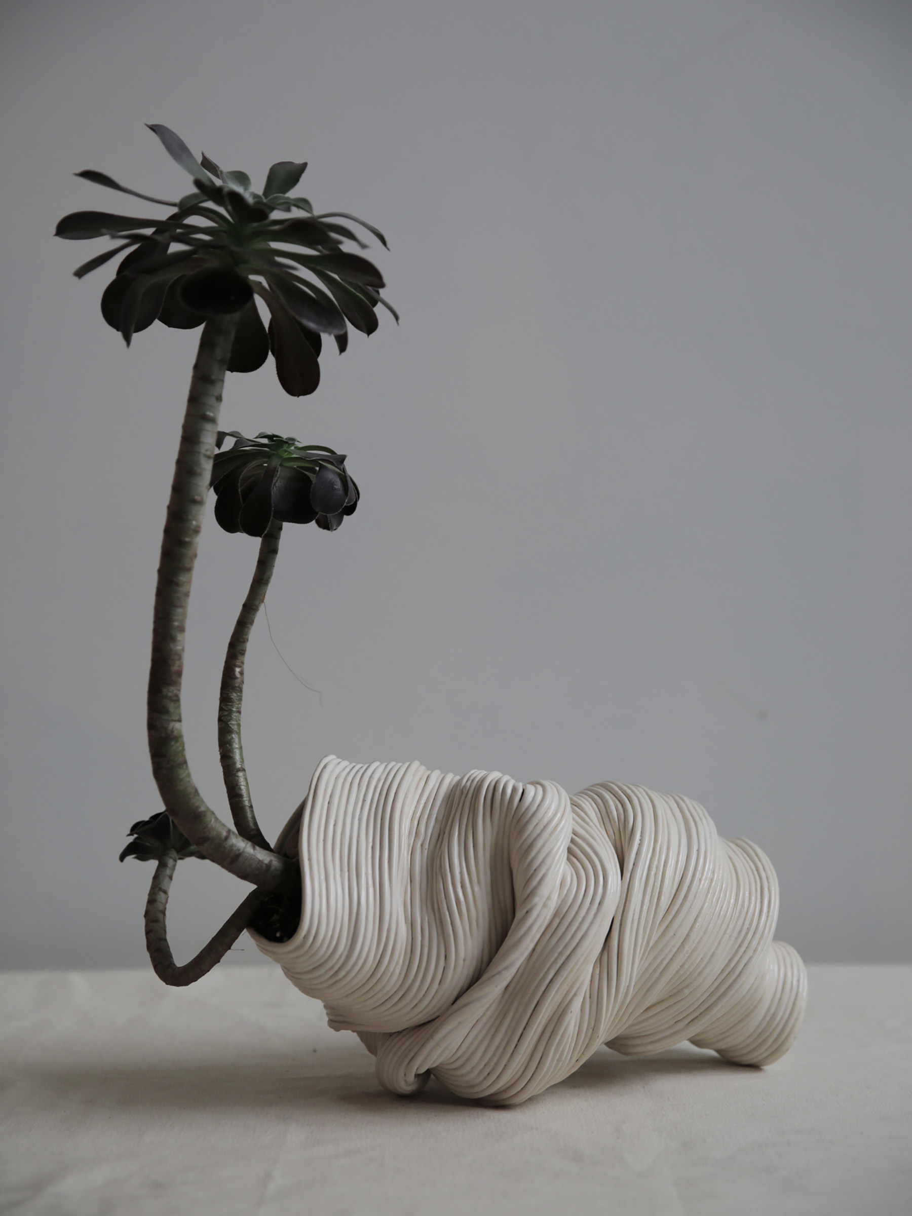 Beautifully Imperfect Ceramic Plant Vessels