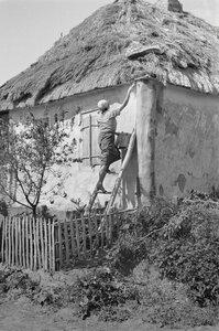 Молодая крестьянка стоит на лестнице и белит дом