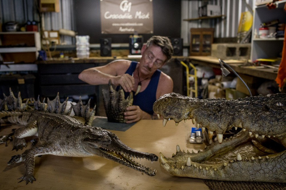 Австралийские охотники на гигантских крокодилов