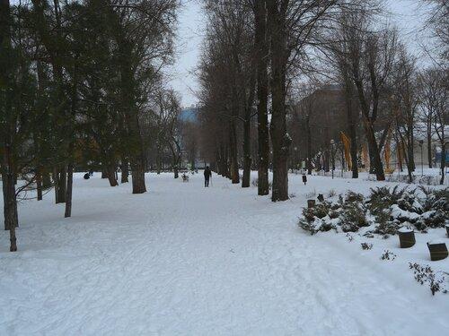 Ростов-на-Дону. Парк им. Октябрьской революции зимой.