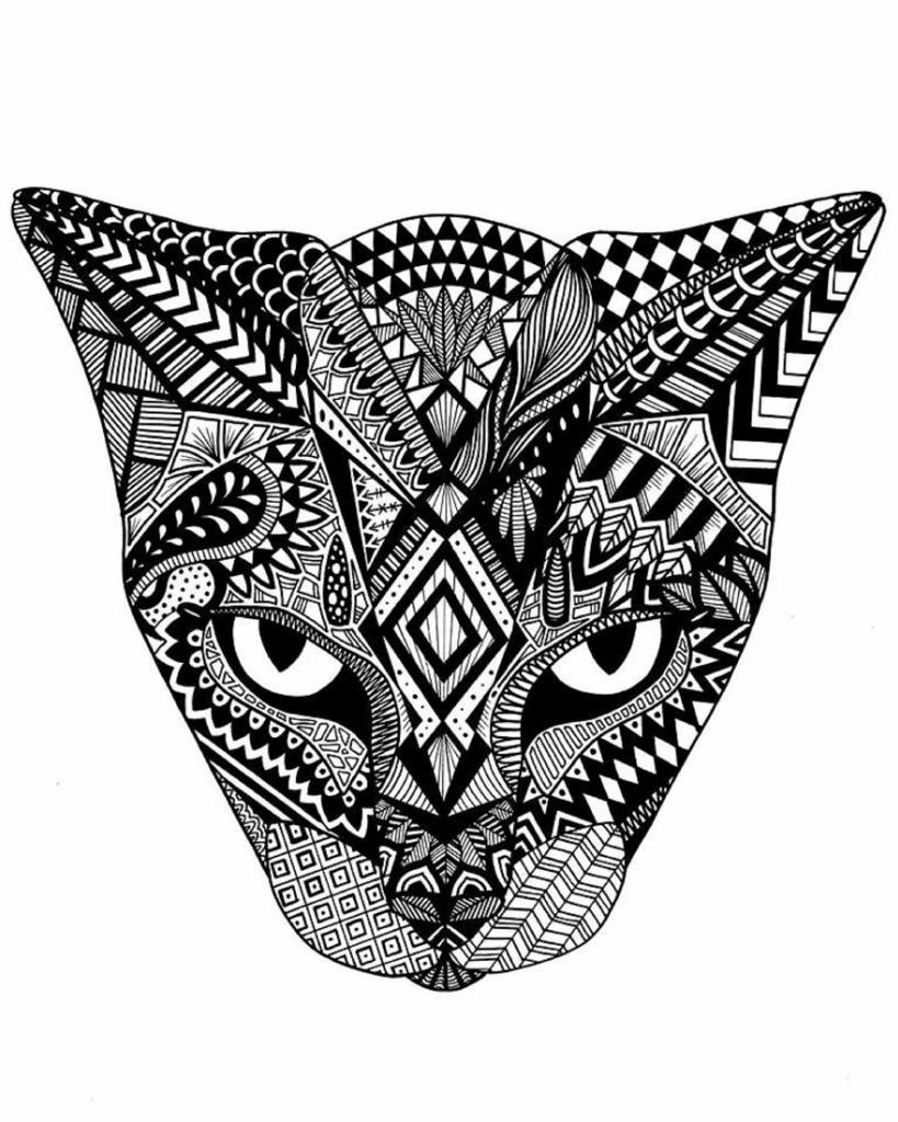 Ashley-Adam-Cat-59caabd712f8b__880.jpg