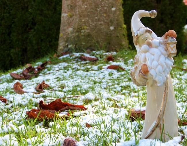 © silviarita/pixabay      Зима торопится