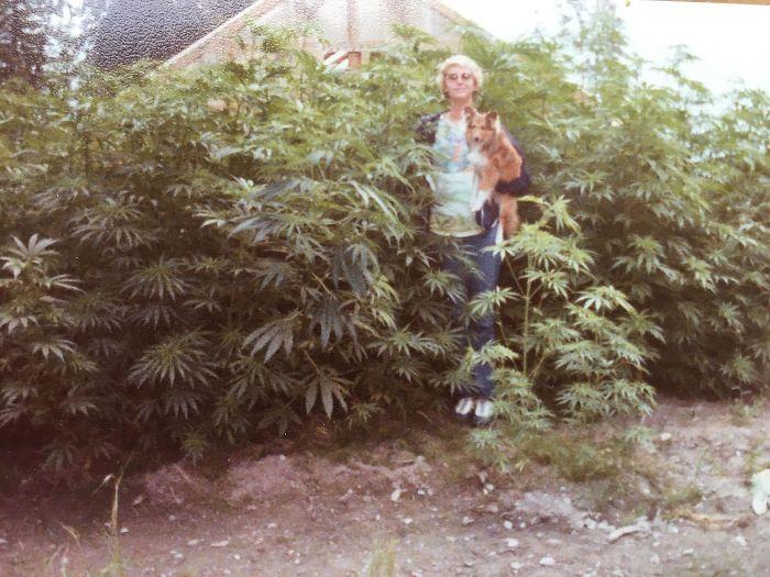 «Мамин огород, 80-е».