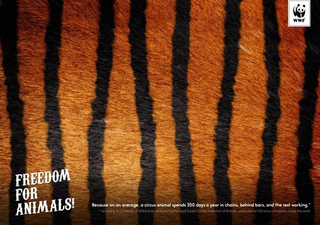 © Friends\TBWA  © WWF      Фото на превью Dentsu, Shanghai, China , adeevee