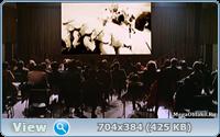 Фантоцци (Антология) / Fantozzi / 1975-1999 / ПМ, ПО, ДБ / DVDRip + (AVC)