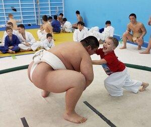 борьба сумо.jpg