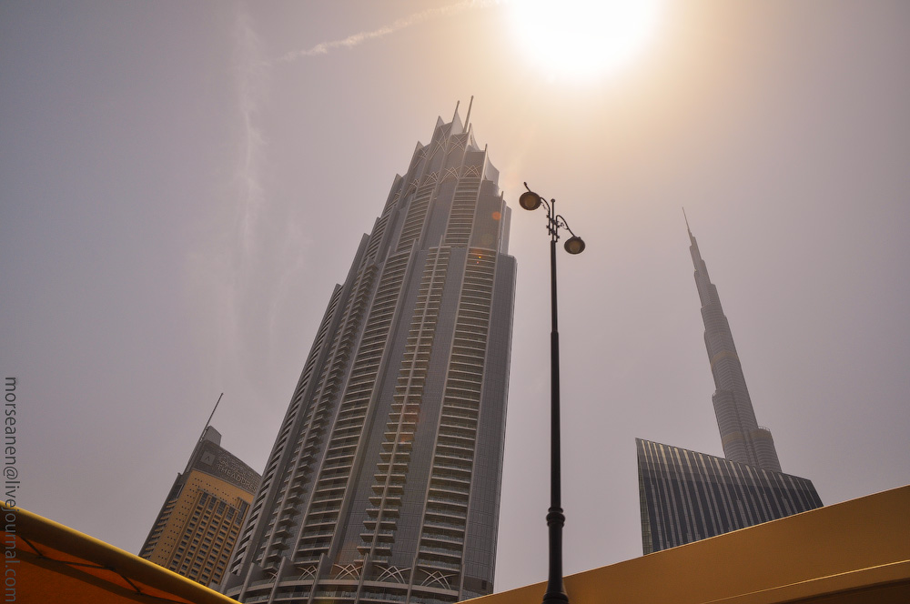 Dubai-Skyscrapers-(21).jpg