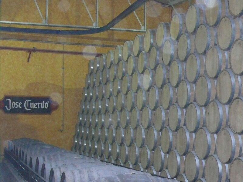 Мексика, Фабрика по производству текилы