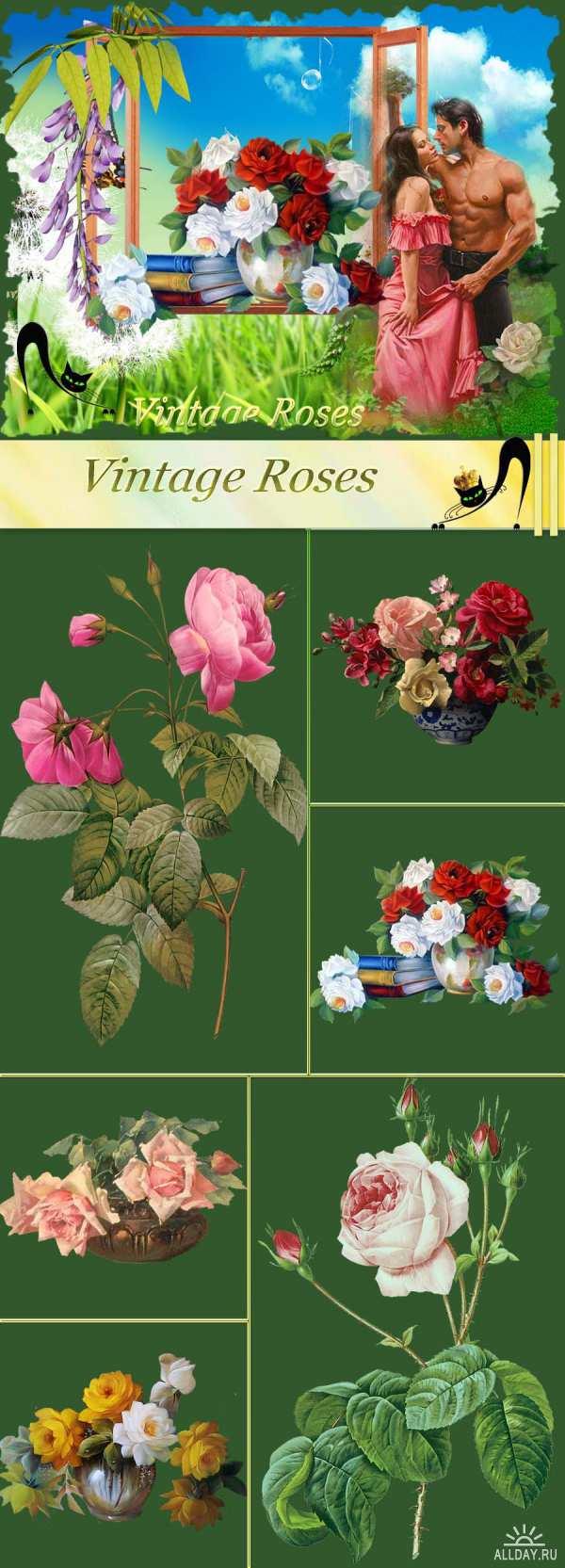 Винтажные розы - Клипарт PNG