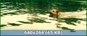 http//img-fotki.yandex.ru/get/378/170664692.80/0_15f9f9_4fa8d8f8_orig.png