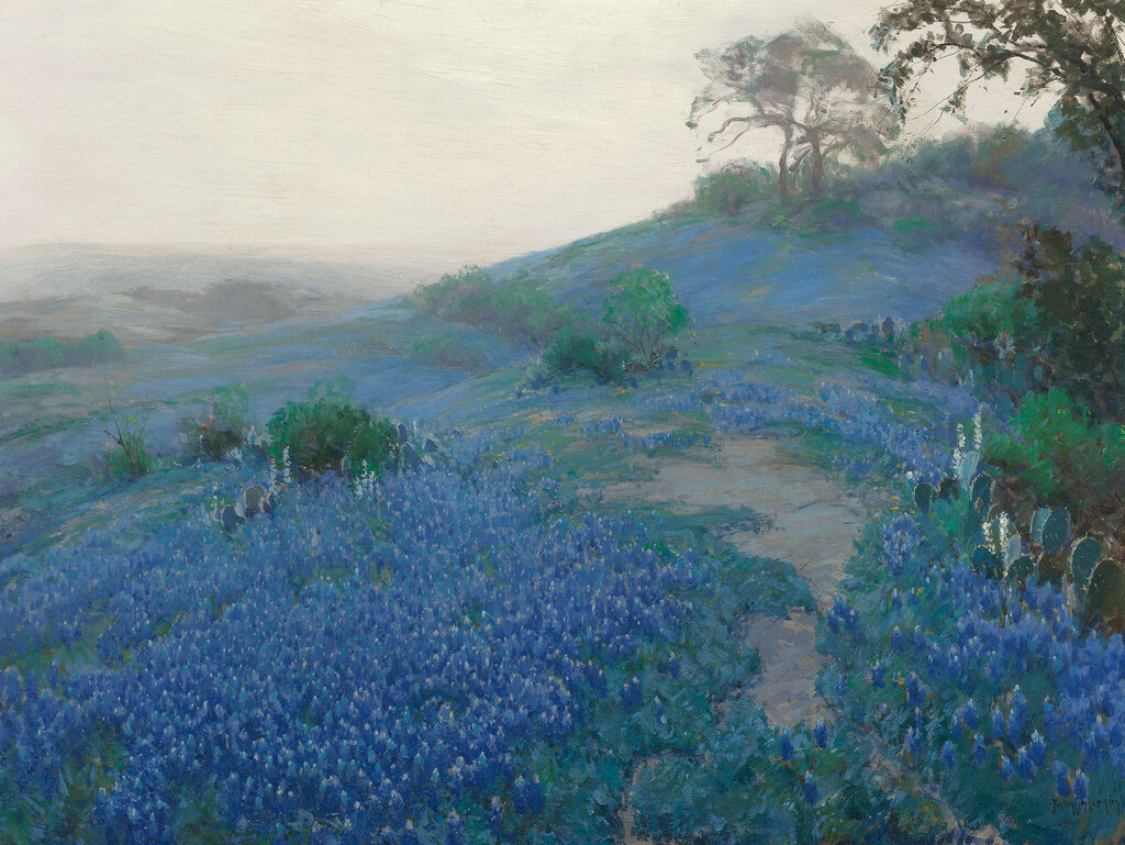 Bluebonnet Field, Early Morning, San Antonio Texas, 1914.jpeg