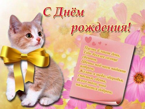 Поздравления с днем рождения с котиком 69